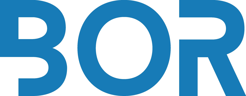 Bor Holding Logo
